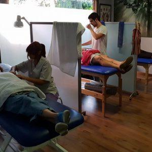 equipo profesional fisioterapeutas titulados